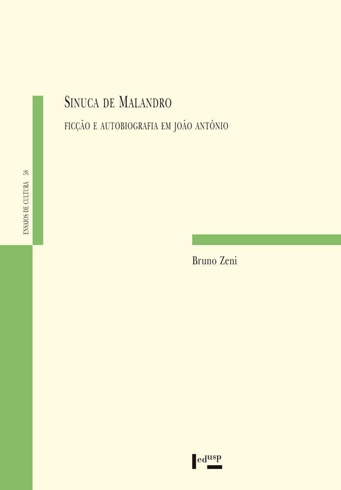 Capa de Sinuca de Malandro